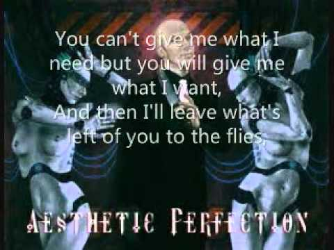 Aesthetic Perfection - Schadenfreude lyrics