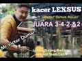 Kacer Lexsus Mr Victor Dumai Babat Semua Kelas Juara     Lomba Burung Berkicau Jengkol Team Cup  Mp3 - Mp4 Download