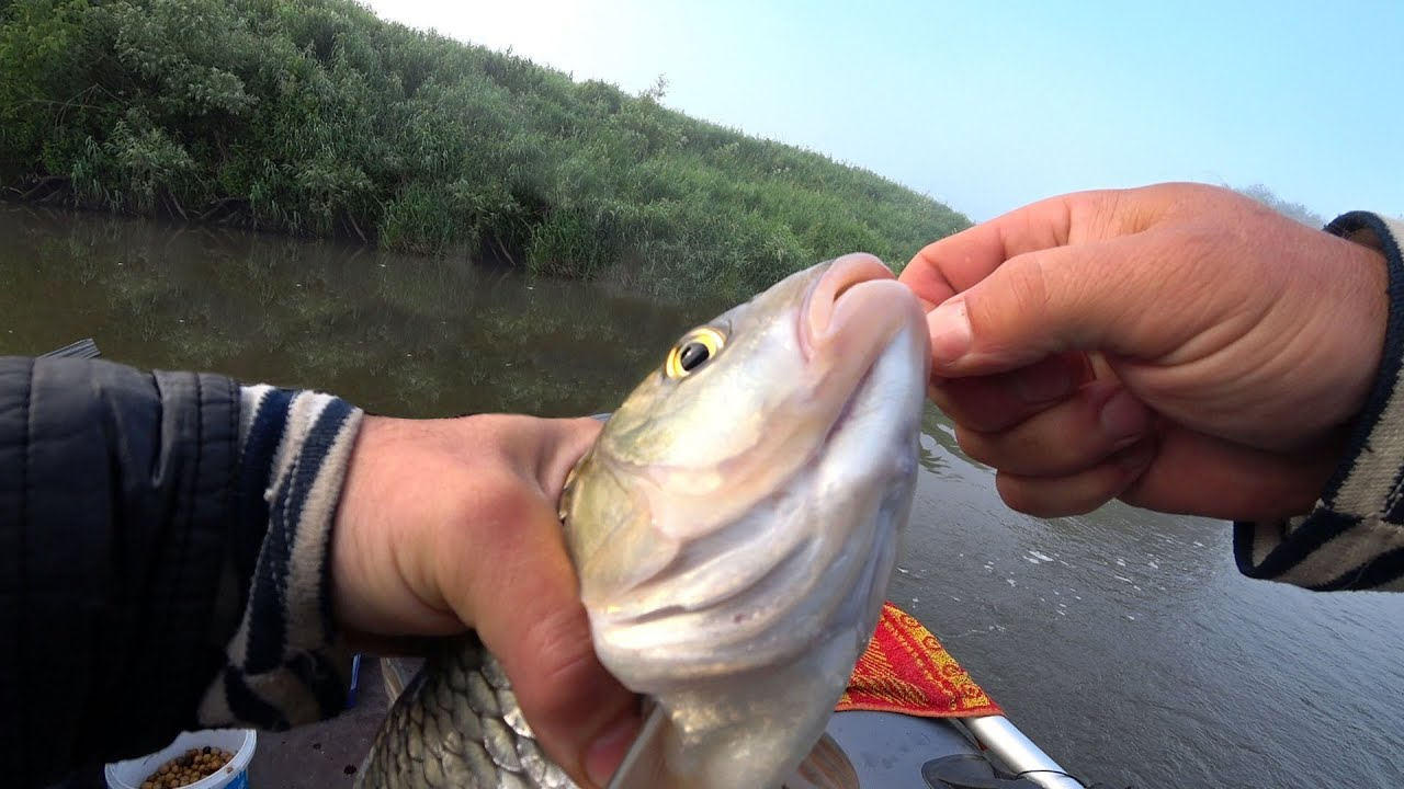 Эта насадка ловит .Летняя рыбалка на Оке в  туман.