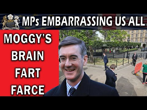 Moggy's Voting Farce Makes The Country Look Ridiculous