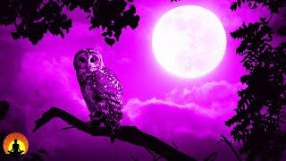 Deep Sleep Music, Calming Music, Sleep Music, Meditation, Insomnia, Spa, Study, Relax, Sleep,☯3673