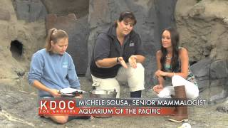Corissa at the Aquarium of the Pacific (Part 7 of 9)