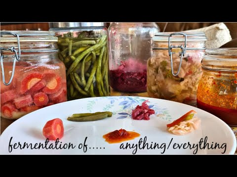 fermentation-of-anything-and-everything-|-fight-corona-|-probiotic-sauerkraut-|-fermented-salsa