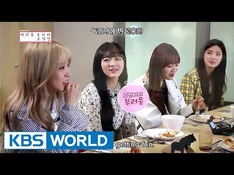 Idol Drama Operation Team members' first encounter! [ENG/CHN/IDOT Ep.1]