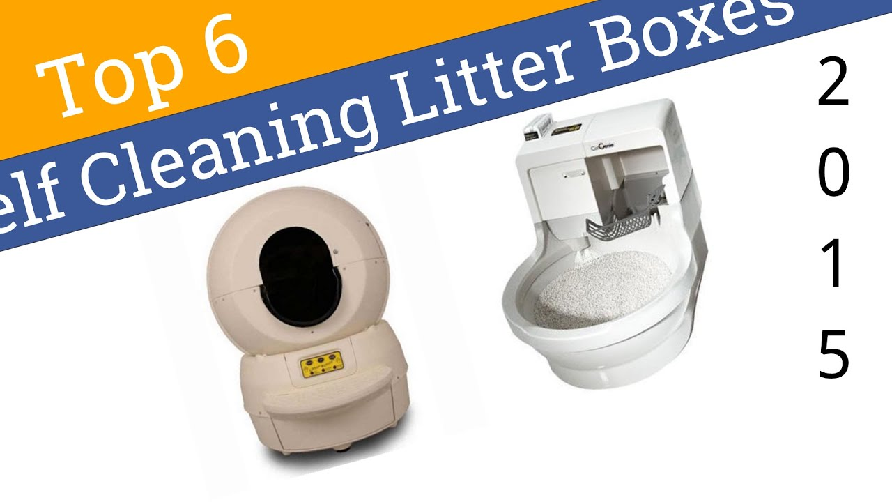 6 Best Self Cleaning Litter Boxes 2015  sc 1 st  YouTube & 6 Best Self Cleaning Litter Boxes 2015 - YouTube Aboutintivar.Com