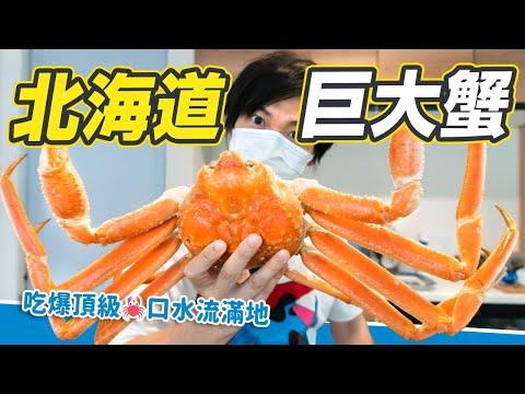 超巨大螃蟹吃到撐死!吃過一次就回不去🔥開箱北海道松葉蟹
