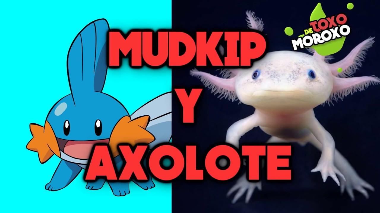 7 Pokémon que  Existen en la Vida Real | Top DeToxoMoroxo