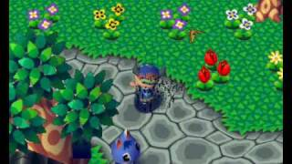 Animal Forest (N64) - Race against bees