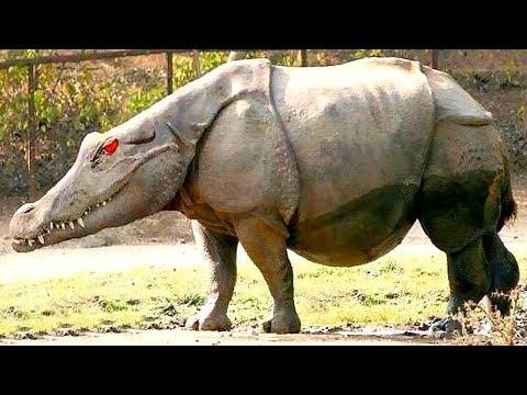 12 حيوان من صنع الإنسان..!!