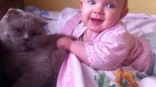 Кошачьи пытки/ дети и животные/ котик/ кот/ смешное видео/ дети