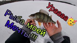 Ловля Окуня на Мормышку Зимняя рыбалка 2021