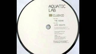 Cluekid - The Sound (Drum Pan Sound)