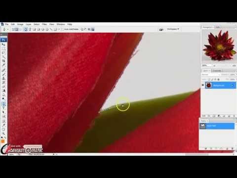 how to cut image in photoshop using pen tool