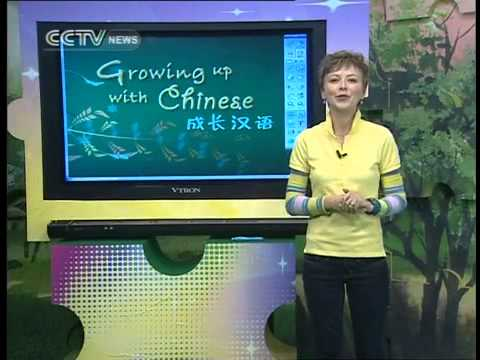 Growing Up with Chinese Lesson 40 Beijing Snacks