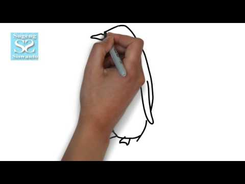 Menggambar Binatang (Pinguin) || Draw Animals (Penguin )