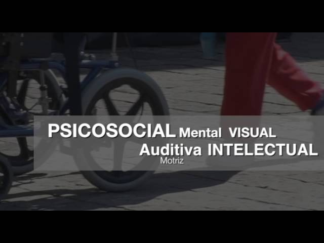 2o Concurso de Investigación sobre Discapacidad en México 2016