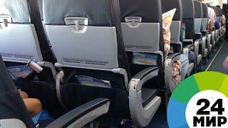 Концерт в самолете: ирландские школьники задорно спели и сыграли для пассажиров - МИР 24