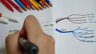 Hướng dẫn cách tạo ra mind map, sơ đồ tư duy đơn giản