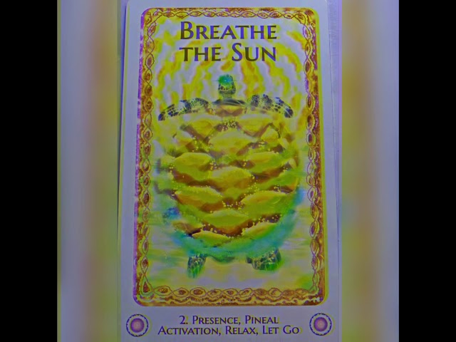 Breathe the Sun Message & Activation