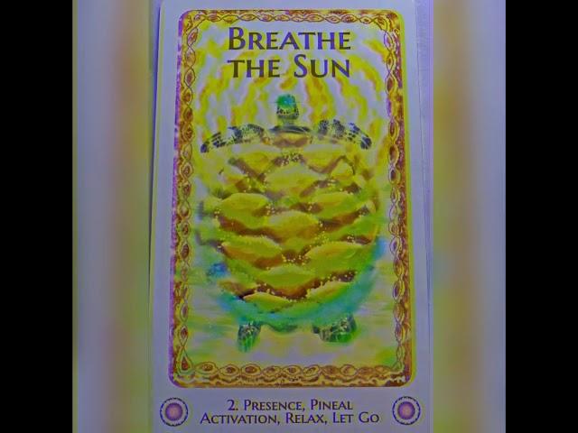 Breathe the Sun Message & Activation