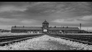 Untold Stories From The Holocaust
