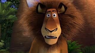 DreamWorks Madagascar en Español Latino | Alex se Vuelve Loco - Madagascar | Dibujos Animados