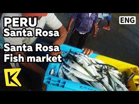 【K】Peru Travel-Santa Rosa[페루 여행-산타로사]산타로사 해변 어시장/Fish market/Beach/Border