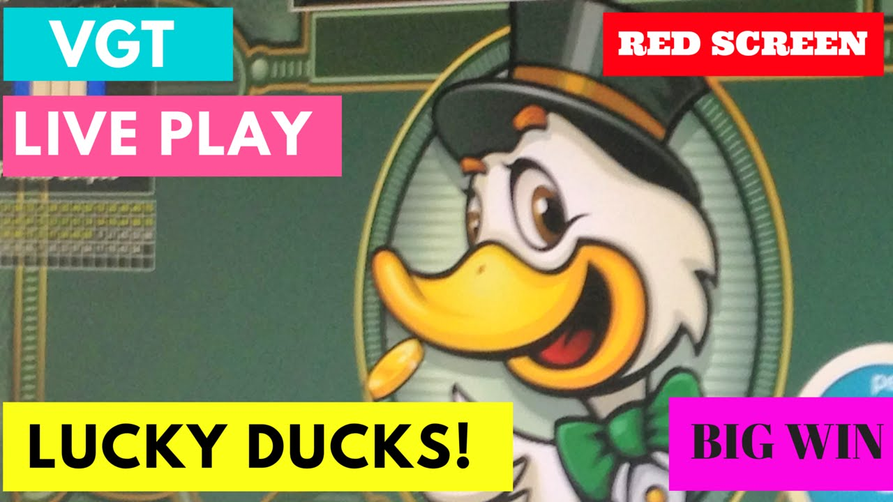 Lucky Ducky Vgt Slot Machine Big Win Hand Pay Youtube