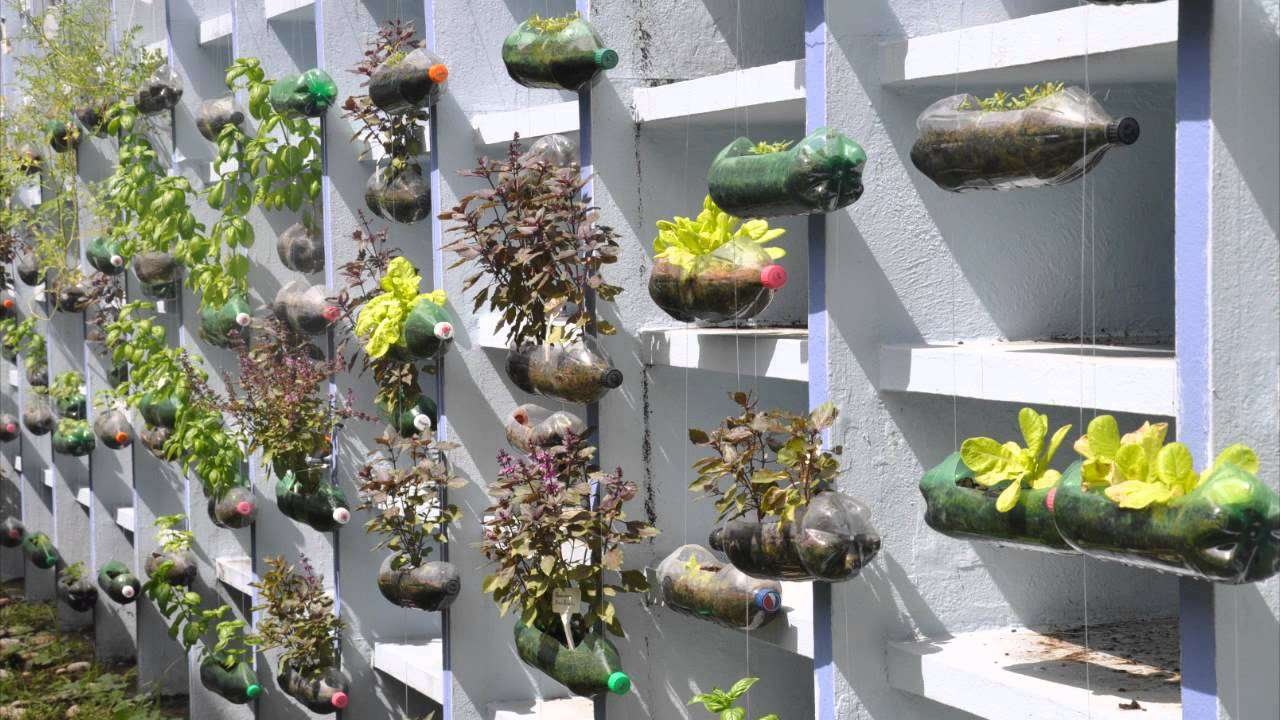 Do It Yourself Home Decorating Ideas: The Hanging Garden Project
