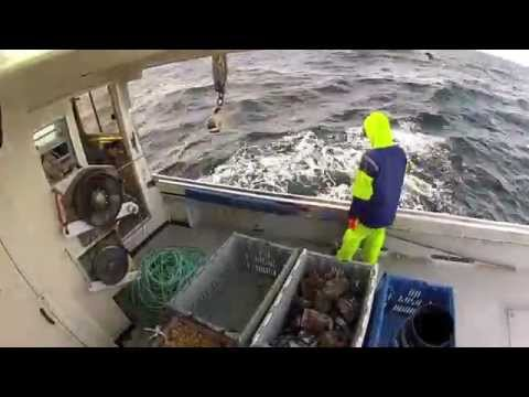 GoPro Lobster Fishing