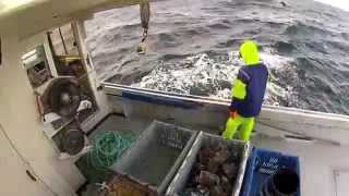 GoPro Lobster Fishing HD
