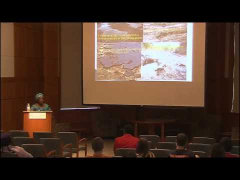 Julia Finomo lectures on oil drilling in Niger Delta