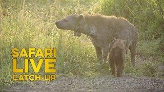 Mara Moment: The North Clan of the Mara Triangle thumbnail