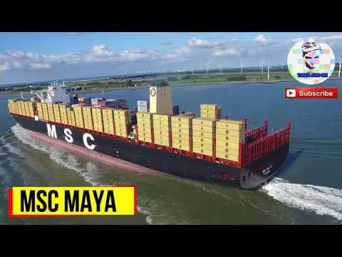 Largest shipping company | Msc largest ship | Mediterranean shipping company | Merchant Navy