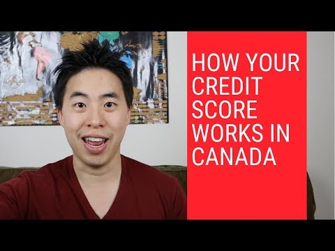 How to get your free credit report canada