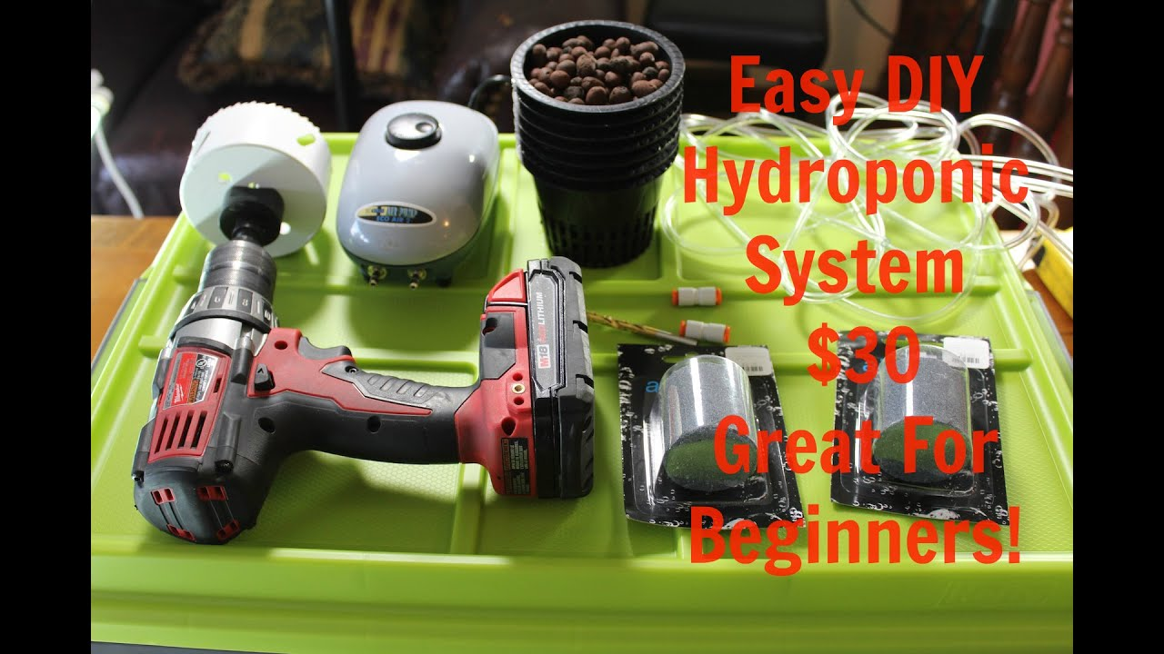 Easy $30 Homemade Deep Water Culture (DWC) Hydroponics ...