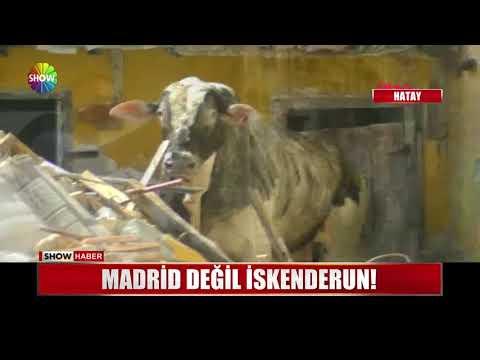 Madrid değil İskenderun!