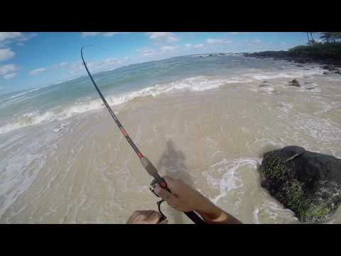 Omilu live action whipping in North Shore Oahu!