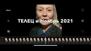 ТЕЛЕЦ♉️Taurus НОЯБРЬ 2021