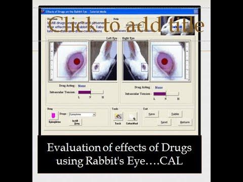 Effect Of Drugs On Rabbit's Eye#Rabbit's Eye Experiment#CAL:Pharmacology Updates