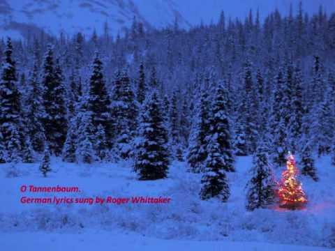 Oh Christmas Tree - O Tannenbaum