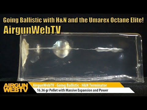 Going Ballistic 2017! Small Bore Lethality brought to you by H&N Pellets - Umarex Octane Elite .22