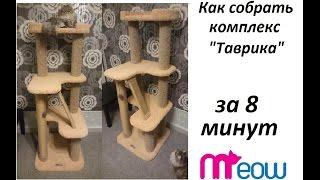 Комплексы для кошки, когтеточка Meow Мяу