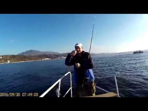 отделения, морская рыбалка слодке смотреть видио фронтовом