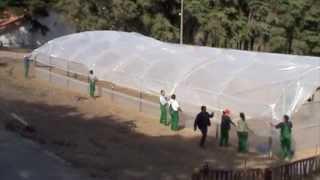 Agricultura Biológica - Preparação e montagem da estufa.