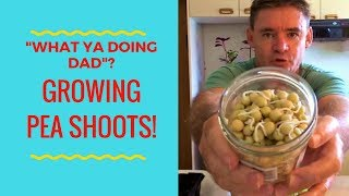 "VLOG ""WHAT YA DOING DAD"" PLUS INDOOR PEA SHOOTS"