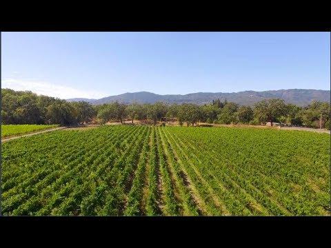 Napa Valley Ride To Defeat ALS PSA (:60) -