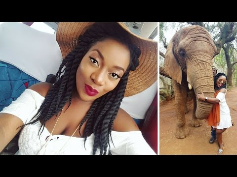 SOUTH AFRICA HOLIDAY : I KISSED AN ELEPHANT & I LIKED IT!