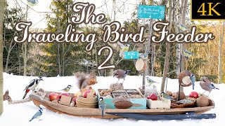 The Traveling Bird Feeder 2 - Relax With Squirrels & Birds (4K, 1 Hour)