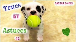 {Nintendogs +Cats}Trucs et Astuces #2 (VB) ♡